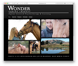 Wonder Equine Therapy